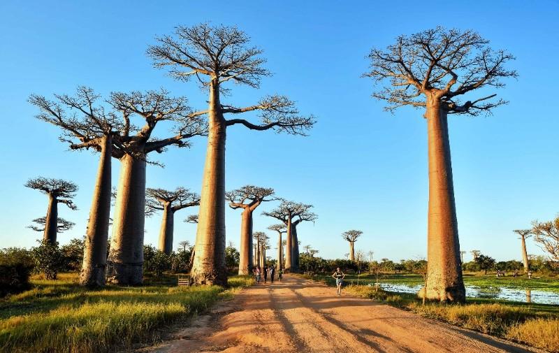 Malagasy-Tours-–-Antananarivo